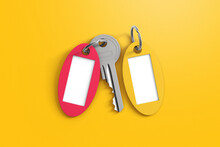 Two Oval Key Fobs Mockup. 3d Rendering