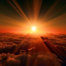 日の出と虎
