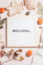 Felt Letter Board And Text Hello Fall With Hashtag And Leaves, Pumpkins, Sweater On Beige Background