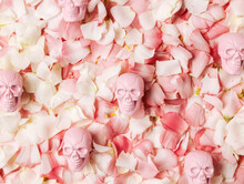 Texture With Pink And Pastel Rose Petals And Pink Skulls. Romantic And Deadly Love Inspired Art Composition. Creative Halloween Or Santa Muerte Floral Fashionable Concept. Flat Lay.
