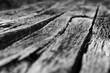 canvas print picture - Bretter Bohlen Holz Struktur schwarz-weiß Graustufen Hintergrund Kontrast Material verwittert Oberfläche hölzern alt diagonal Balken Lost Place Fuge selektive Schärfe Perspektive Makro Nahaufnahme