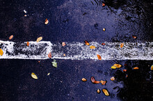Many Leaves In Water With Cement While The Rain Has Just Stopped