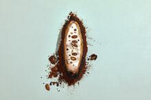 Cacao Cocoa Plant Fruit On Cocoa