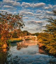 Lake In Autumn Beautiful Place Clouds Sky Miami Florida Trees Reflecti