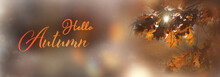 Autumn Background Banner With Text - Hello Autumn Beautiful Autumn Landscape With Oak Branches And Leaves