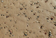 Background Of Sea Sand And Pebbles. High Quality Photo