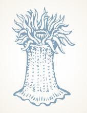 Sea Creature. Vector Drawing Icon