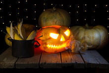 A Pumpkin With A Doll In Its Teeth On A Black Background. A Pumpkin Lantern For The Halloween Holiday.