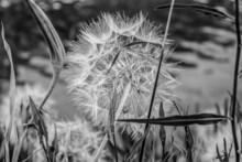 La Grande Motte En Photos