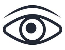 Eye Human Organ