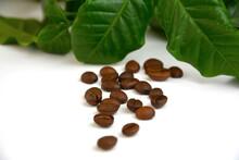 Coffee - Kawa