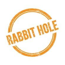 RABBIT HOLE Text Written On Orange Grungy Round Stamp.