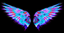 Colourful Abstract Neon Angel Wings Isolated On Black Background