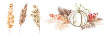 Pumpkin And Pampas Grass Arrangement. Fall Boho Style Watercolor Illustration. Autumn, Harvest, Thanksgiving Card, Greeteng, Stationery, Fall Wedding Invitation