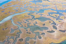 Narrow Channels Meander Through A Salt Marsh In Pleasant Bay, Cape Cod, Massachusetts. This Type Of Wetland Habitat Is Vital Feeding Grounds For Migrating Birds, Fish, And Many Marine Invertebrates.
