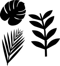 Tropical Plant Templates Fern Leaves