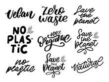 100 Set Natural Vector Lettering Stamp Illustration Slogan Calligraphy