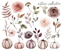 Pumpkins With Flowers Watercolor Drawing, Autumn Illustration For Thanksgiving, Halloween Design.