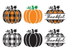 Set Of Cute Decorative Pumpkins With Plaid Pattern. Pumpkin Split Frame Vector Illustration.