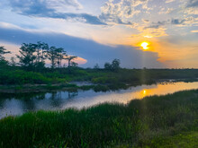 Louisiana Swamp Sunset Silhouette And Reflections