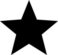 Vector Star Icon . A Flat Black Star. An Illustrative Symbol Of A Star Silhouette On A White Background.
