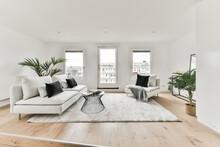 White Furniture On Carpet In Living Room