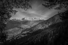 Black And White View Of Catinaccio Dolomitic Peaks Visible Through An Opening In The Trees, Italy