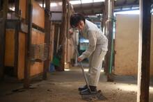 厩舎を掃除する女性