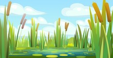 Landscape With A Swampy Shore Of A Lake Or River. Coast Is Overgrown With Grass, Reeds And Cattails. Water With Water Lily Leaves. Wild Pond. Vector.