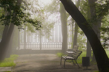 Foggy Morning In The Old City Park. Fence, Benches, Shade Of Trees.