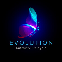 Evolution Butterfly Life Cycle. Flying Moth Neon Silhouette In 3D Line Art Style. Vector Illustration Of Glowing Papillon Wireframe Side View Isolated On A Dark Background