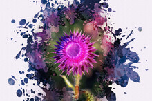 Milk Thistle Blossoms. Purple Wildflowers. Multicolored Splashes And Drops Of Paint. Digital Watercolor Painting.