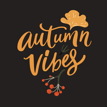 Autumn Vibes Quote. Inspirational Fall Typography Decorated Gimkgo Biloba Leaf And Red Berries