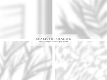 Realistic Shadow Vector Mockup. Vector Overlay Effect. Natural Overshadow For Your Design, 1 Vector Layer In Multiply Mode, Light File