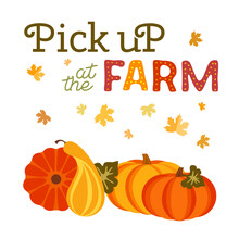 Pick Up Pumpkins At Farm Flat Color Vector Banner. Fall Season Pumpkin Patches Cartoon Design Element. Autumn Vegetables Harvest Background. Pumpkin Picking Festival Market Fun Template Illustration.