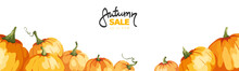 Banner With Watercolor Pumpkins. Vector Illustration In Watercolor Painting Style. Background, Vector Illustration For Autumn Sale.