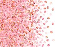 Blush Pink Spangles Confetti Scatter Vector Illustration. Wedding Invitation Card Background. Festive Shining Foil Elements Holiday Decoration. Romantic Bridal Confetti Texture.
