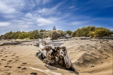 The Historic Coquille River Lighthouse Behind The Beach With Driftwood, Bandon Oregon USA