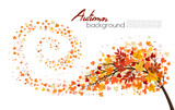 Autumn absctact background with a tree and a colorful leaves. Vector.