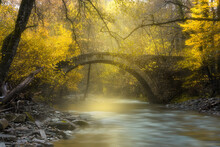 Scenic View Of A Creek Flowing Downstream With Autumnal Trees And An Old Bridge In A Forest