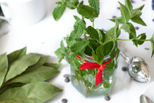 Peppermint Leaves In Glass Bottle With Red Bow On White Tablecloth