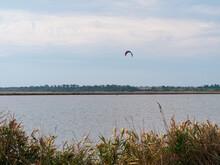The Athlete Practices Kite Board Surfing On Blue Sea Waves. Autumn Kiteboarding. Fall Ocean Fun. Extreme Sport Kitesurfing. Windy Weather On The Beach.