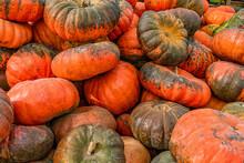 Background Of Many Pumpkins. Autumn Theme
