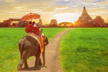 Elephant And Tourists On An Ride Tour Of The Ancient City In Sun Rise