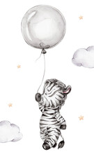 Cartoon Zebra Flies With Gray Balloon; Watercolor Hand Drawn Illustration; With White Isolated Background