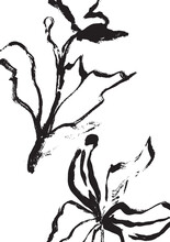 Black And White Hand-drawn Flower