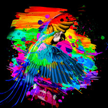 Abstract Colored Parrot With Colorful Paint Splashes On Background