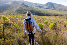 Woman On A Path In The Fynbos, Phillipskop Nature Reserve,