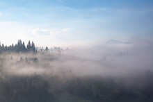 Amazing Foggy Morning. Landscape With High Mountains. Forest Of The Pine Trees. The Early Morning Mist. Touristic Place. Natural Scenery.