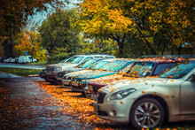 City Street In Autumn.Colorful Autumn Leaves Lie On The Road And On Cars